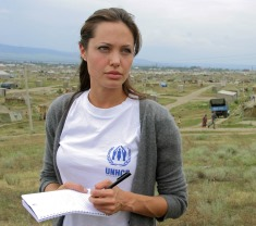 Angelina Jolie: career and vocation