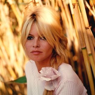 Focus Astro celebrity: Brigitte Bardot