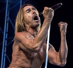 Focus Astro celebrity: Iggy Pop